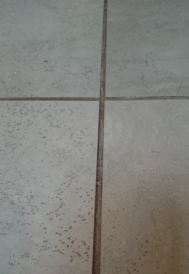 Porcelain Floor Grout Lines Before Cleaning